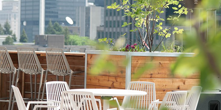 Photo of the Montreal office's terrace